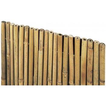 Arella River 1.5x3 In Cannette Di Bamboo Pieno Verdelook